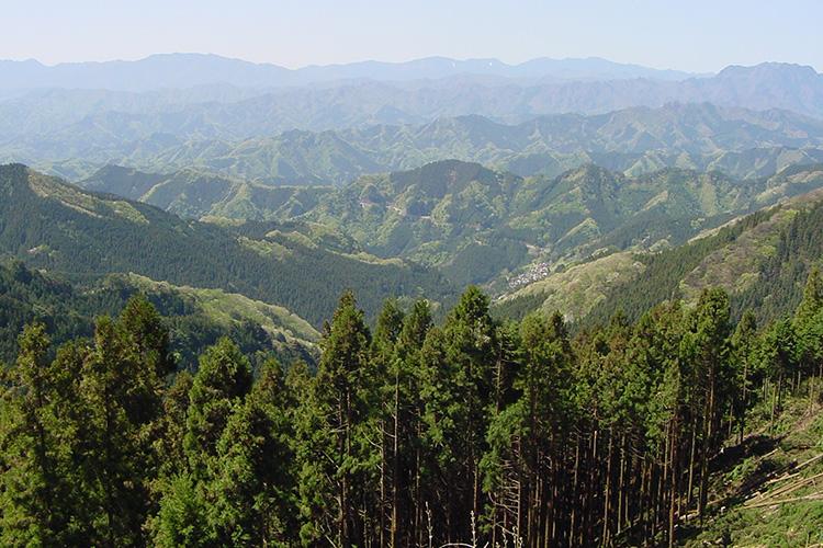 県立西秩父自然公園